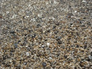 crushed shell for driveway/