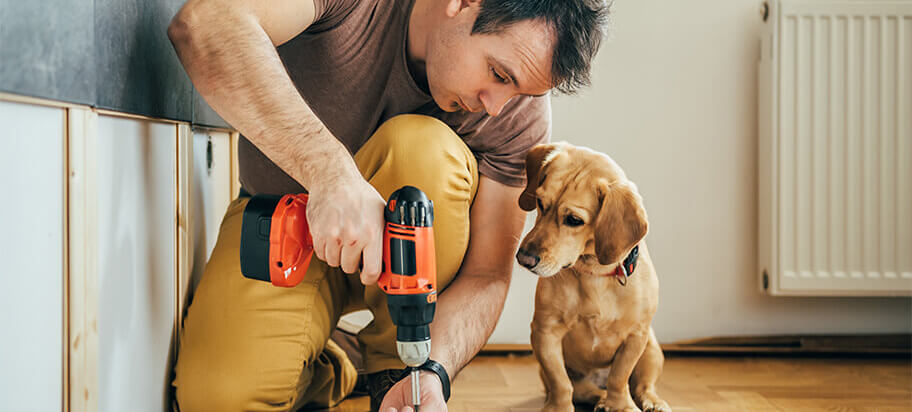 Budget Home Improvement Ideas for Under $100